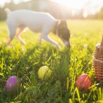 The Best Ways to Prepare for Easter Sunday in Southlake at Shops of Southlake